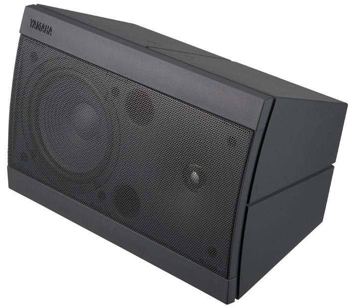 Компактная 2-полосная мониторная система S55